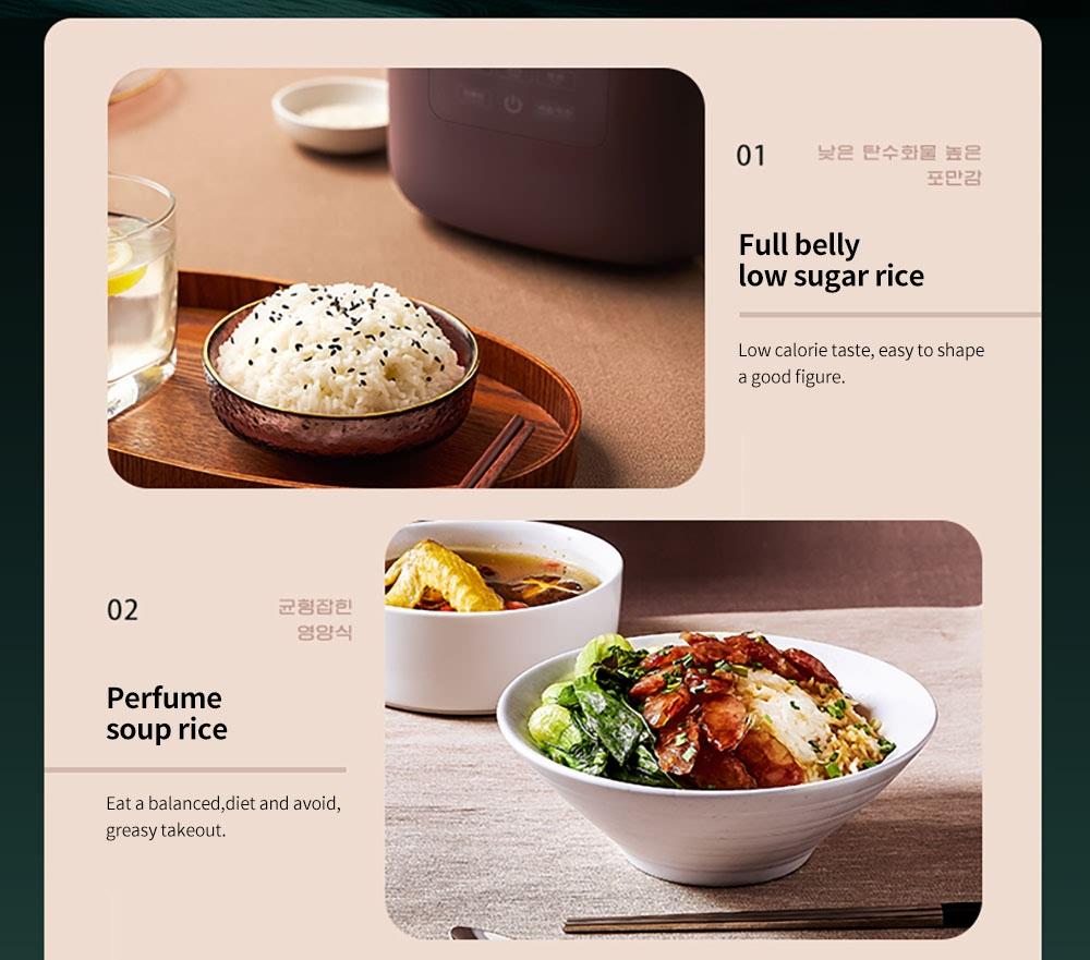 1.6L Low Sugar Rice Cooker (3)