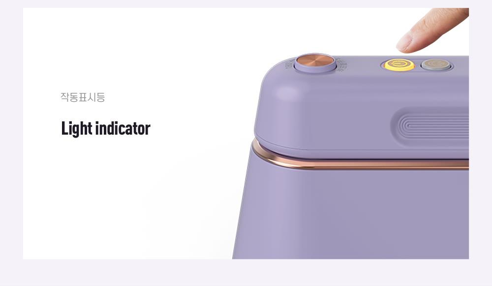 Handheld Garment Steamer  (10)