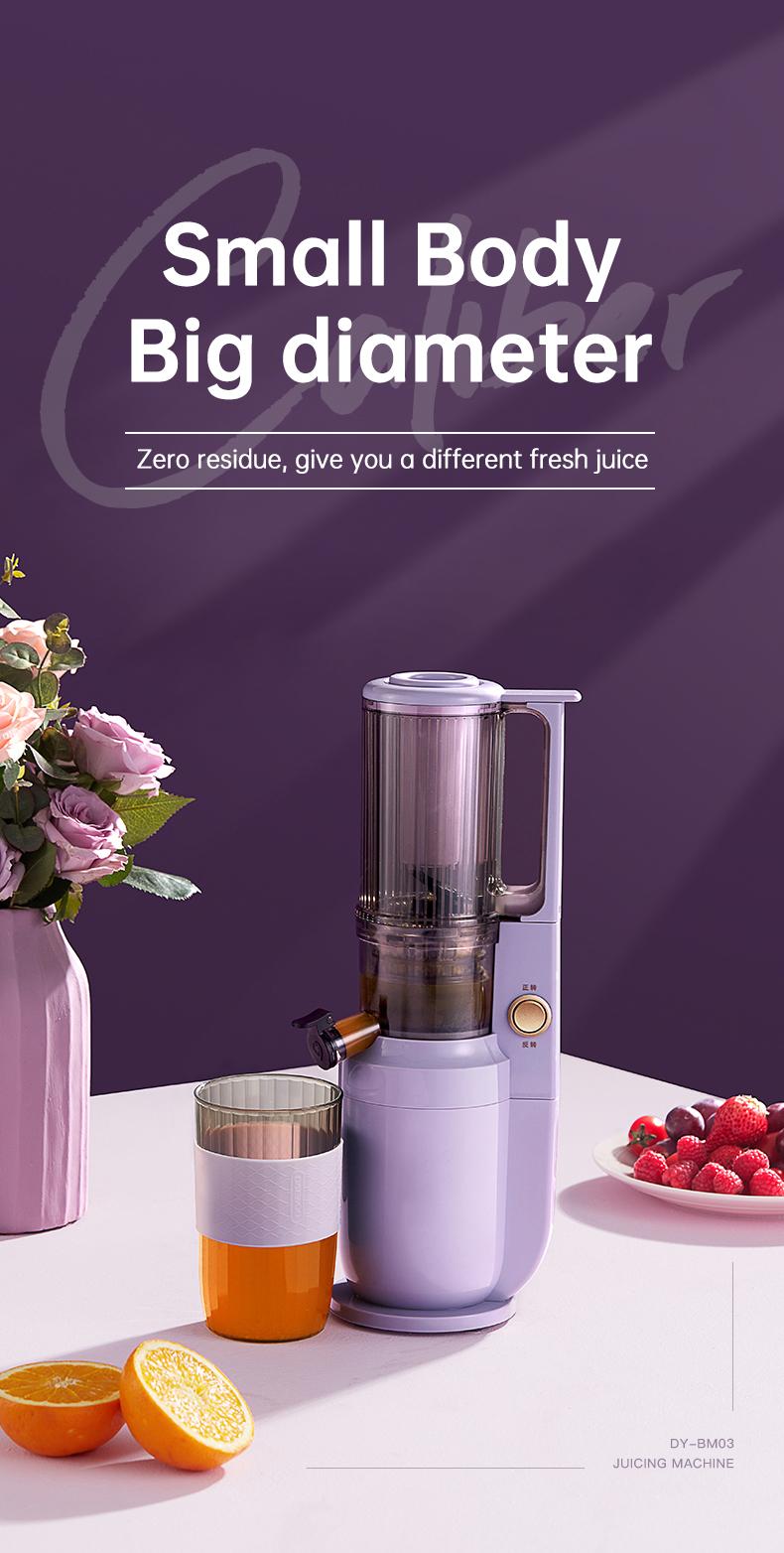 slow juicer machine detail 01