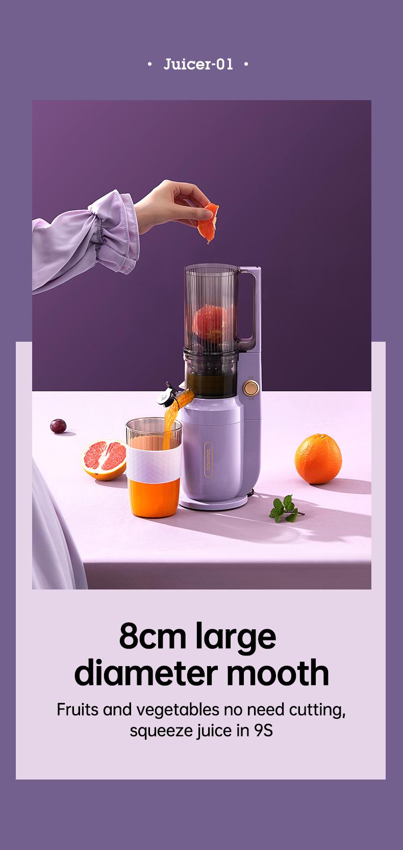 slow juicer machine detail 03