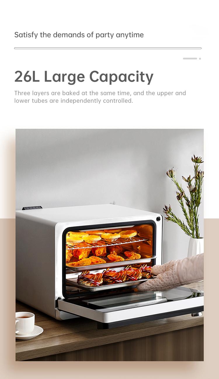 steam oven 03